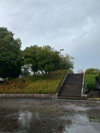 雨〜・・・☆