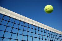 テニスコートの桜が咲いてきています!ウィングローバルテニスアカデミー熊谷