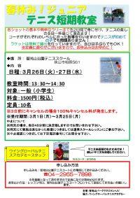 智光山公園テニススクール 短期教室!