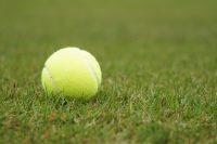 本日すくすくのっぽくんの大会!智光山公園テニススクール